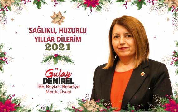 Gülay Demirel'den Yeni Yıl Mesajı