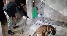 Beykoz'da gece yarısı uyuşturucu operasyon yapıldı